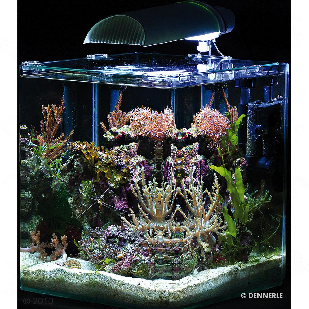 The Dennerle Nano Marinus Cube Complete Plus 30 Litres contains everything you need to get off to a good start to saltwater aquaristics. An old rule states that th...