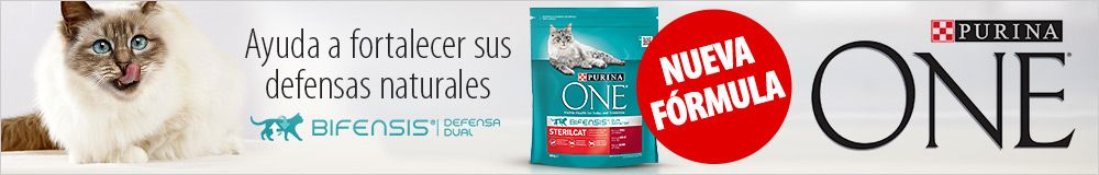 Purina One pienso