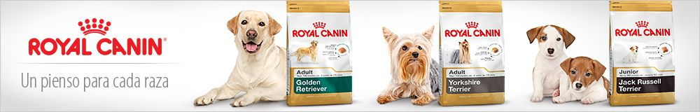 Royal Canin Breed para perros