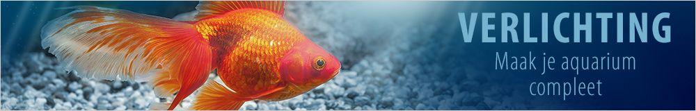t5 t8 hqi led aquariumverlichting voordelig bij zooplus
