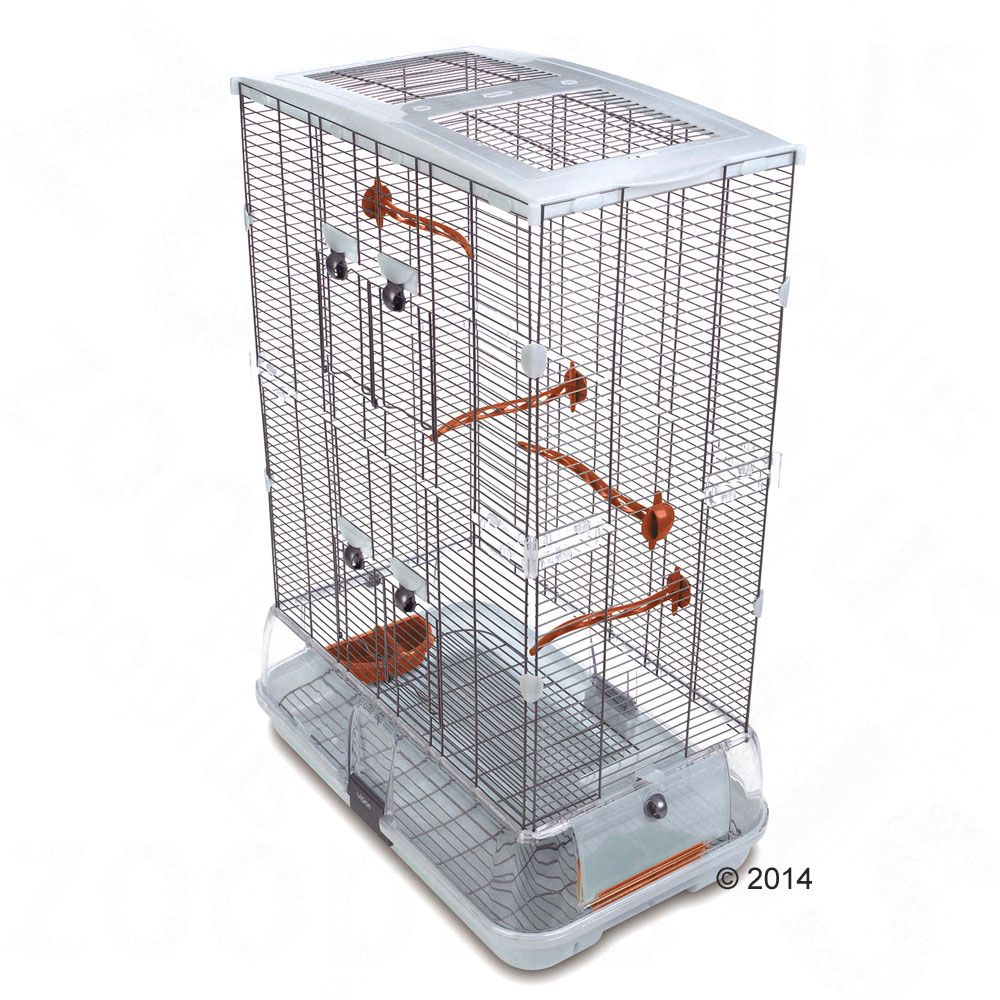 Oiseau Cage Cages Hagen