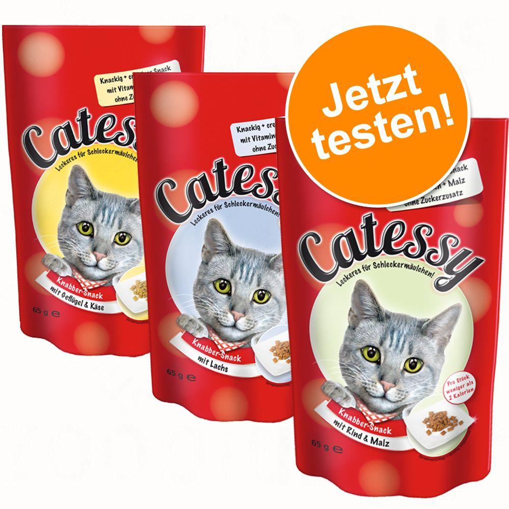 Gemischtes Probierpaket Catessy Knabber-Snack 3...