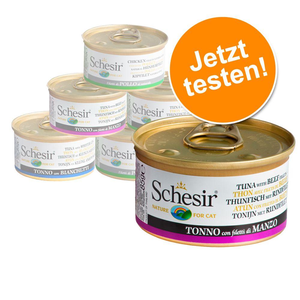 Probierpaket Schesir 6 x 70 g / 75 g / 85 g - Mix VII - Fischvariationen in Brühe 4 Sorten (6 x 70 g)