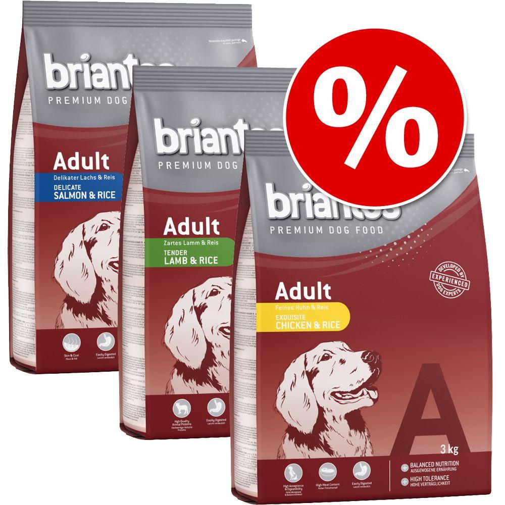 Blandat provpack: Briantos Adult torrfoder – 3 x 3 kg