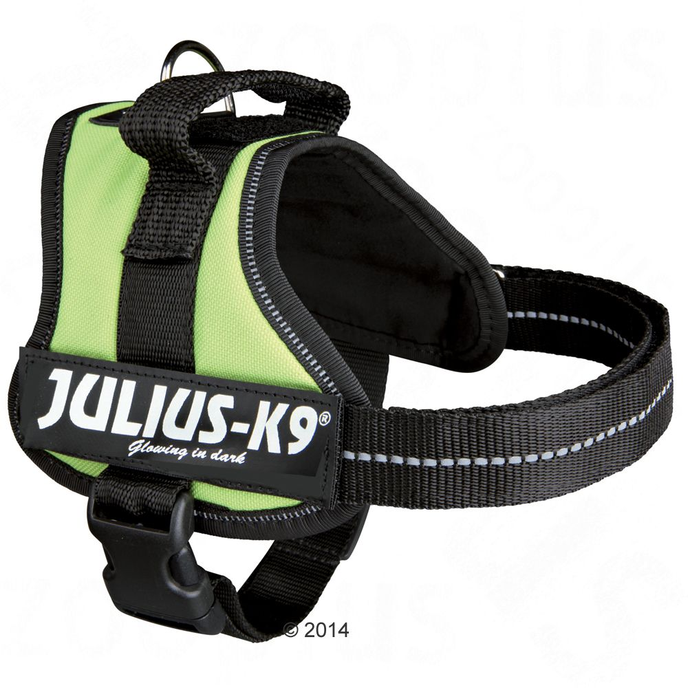 Image of Pettorina Julius-K9 Power Pastel Green - Tg. 1
