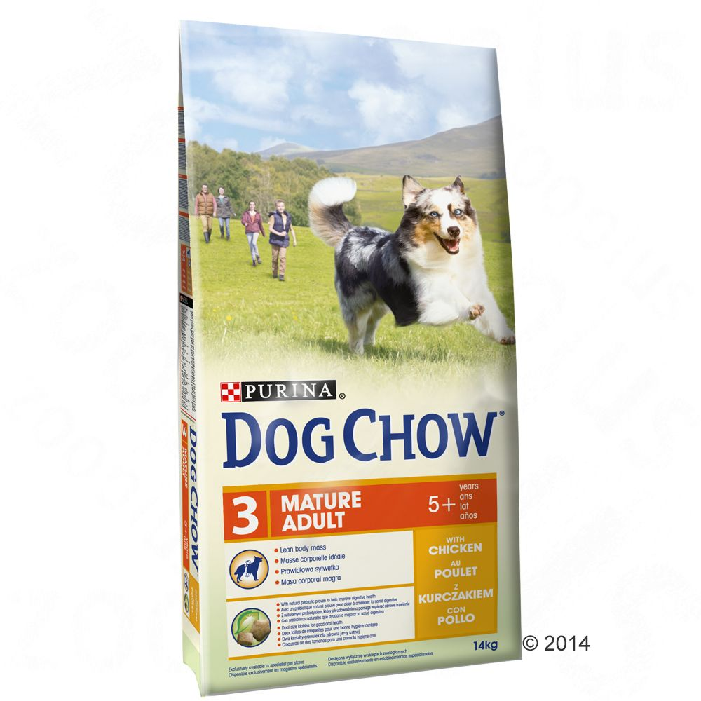 Chien Croquettes Dog Chow Senior