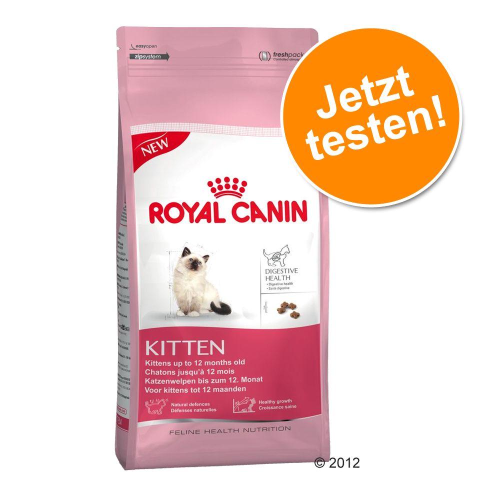 Probierpreis: 400 g Royal Canin für Kitten - Kitten (bis zum 12. Monat)