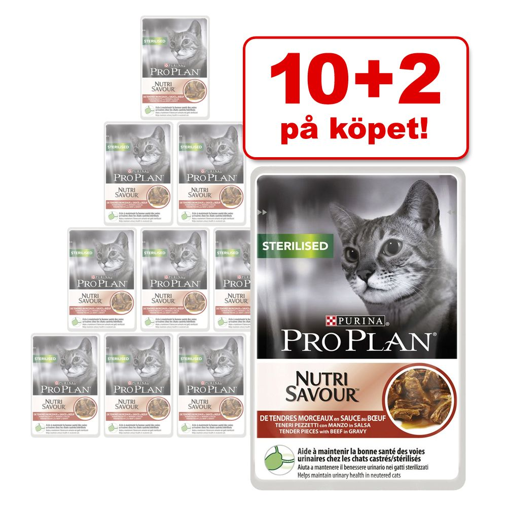 10 + 2 på köpet! Pro Plan 12 x 85 g – Housecat Salmon & Sterilised Chicken
