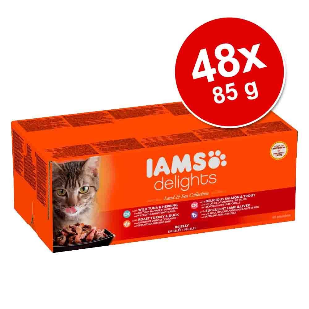 Korzystny pakiet IAMS Adult Delights, 48 x 85 g - Pakiet mieszany w sosie