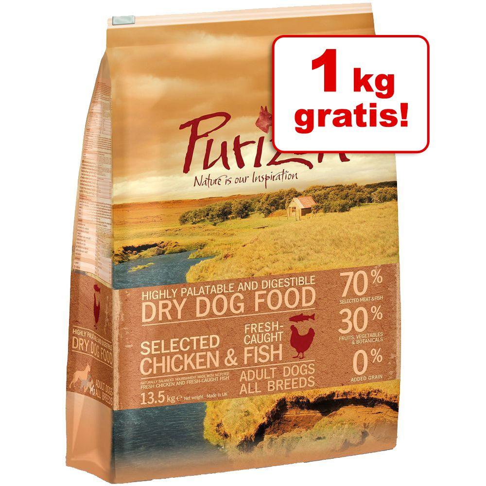 11 + 1 kg gratis! Purizon Adult, 12 kg - Adult, kurczak z rybą