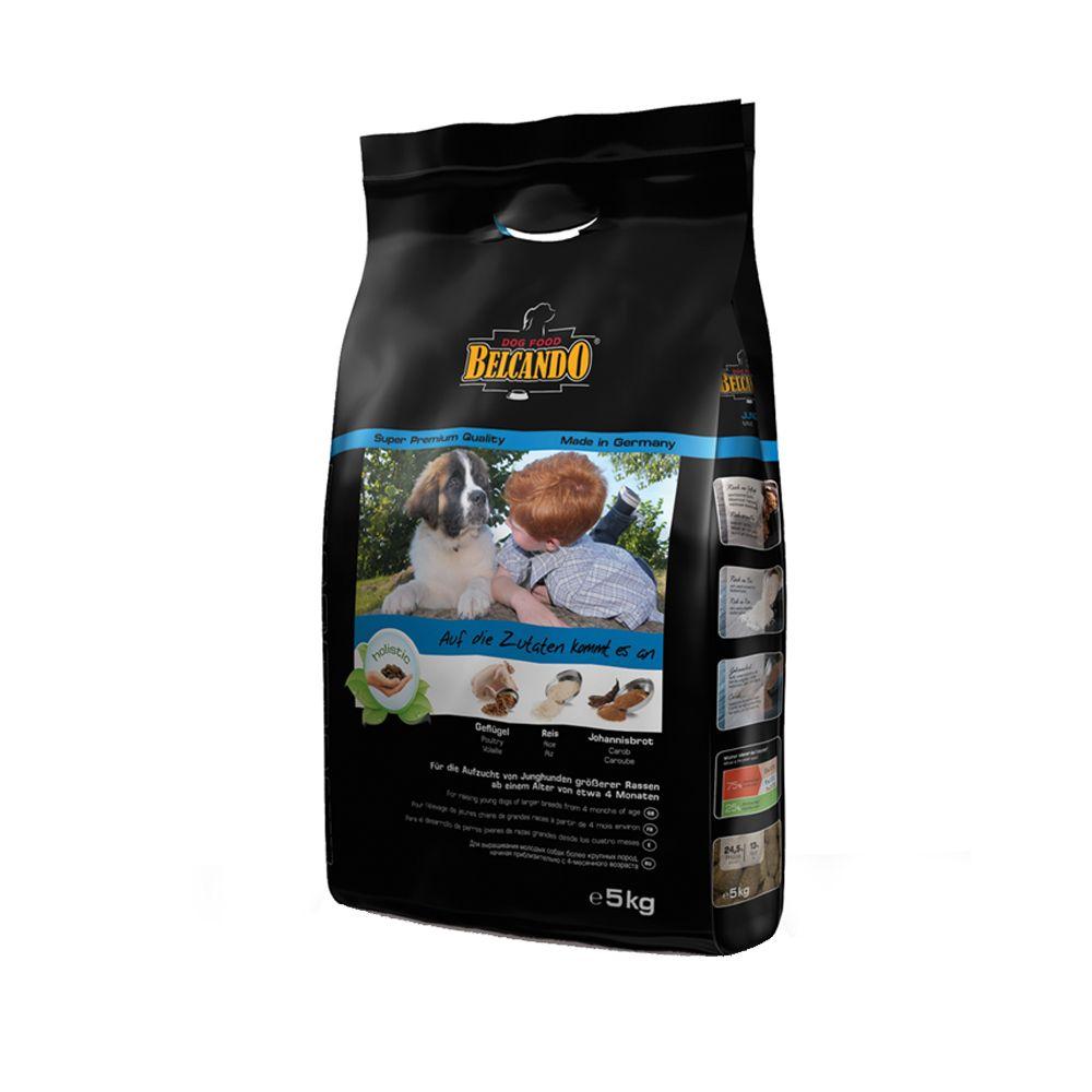 Belcando Junior Maxi - Economy Pack: 2 x 15kg