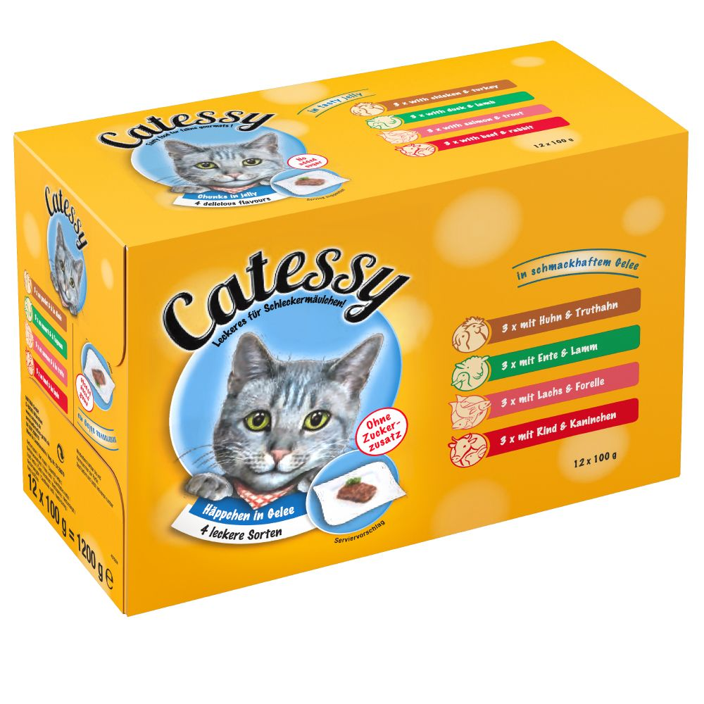 100g Catessy Chunks Wet Cat Food Pouches