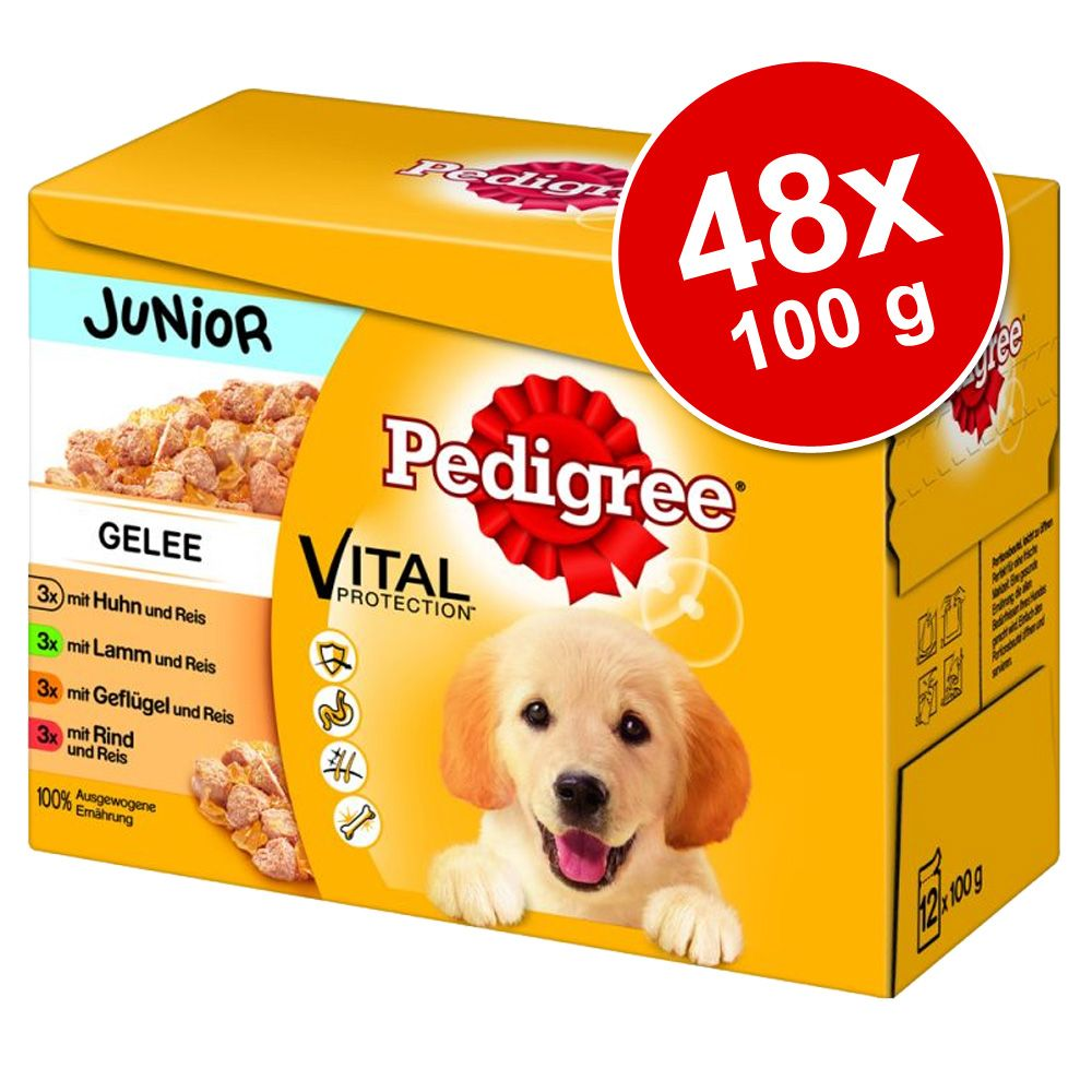 Megapakiet Pedigree Junio