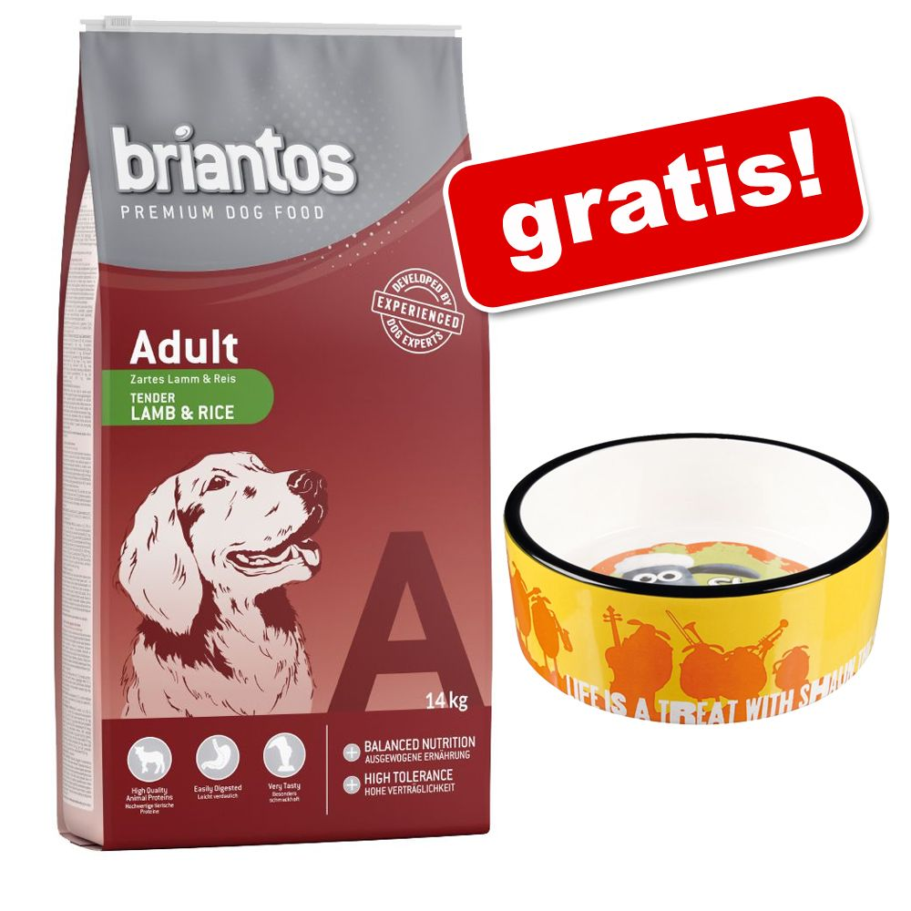14 kg Briantos karma dla psa + Trixie Baranek Shaun miska ceramiczna gratis! - Adult Light