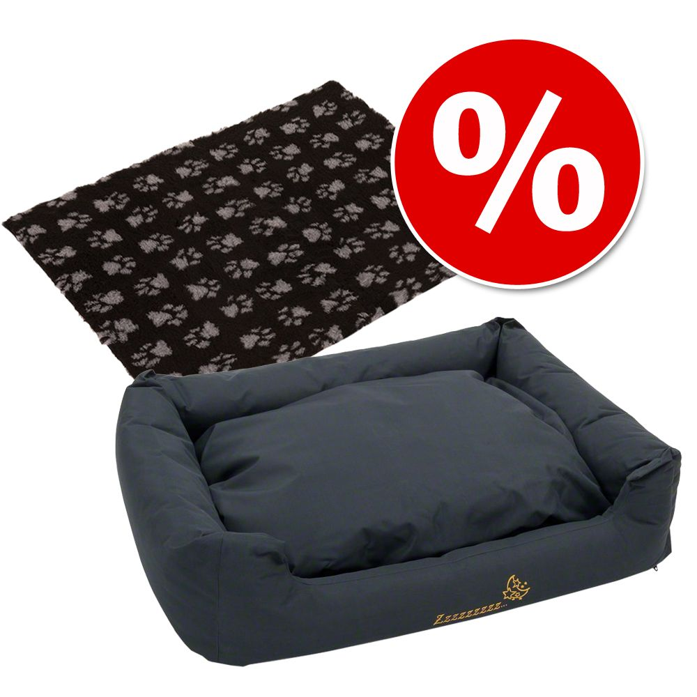 Set: Hundebett Sleepy Time grey mit Kissen + Vetbed® Isobed SL Hundedecke Paw - Set S