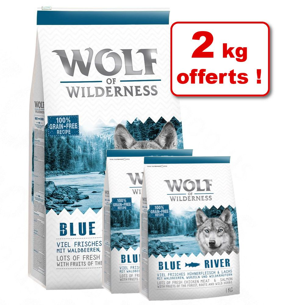 12kg Elements Rocky Canyons, bœuf Wolf of Wilderness - Croquettes pour chien