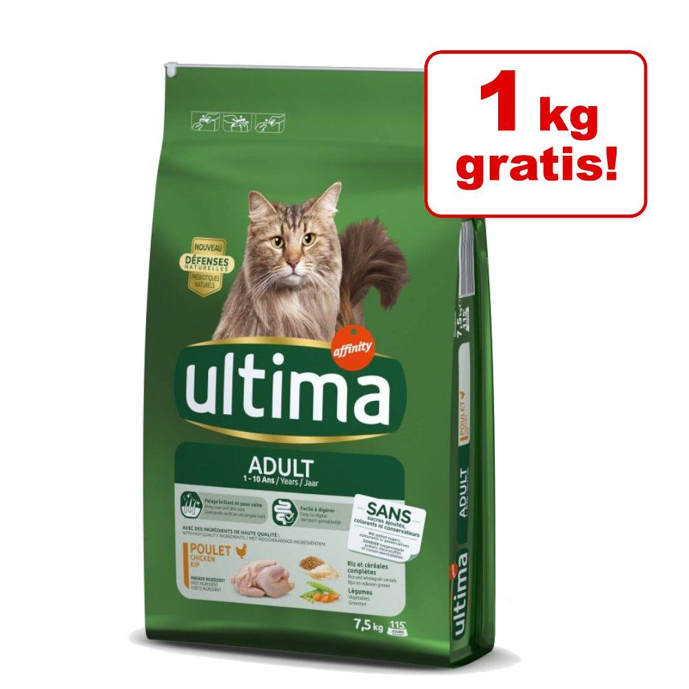 6,5 kg + 1 kg på köpet! Ultima Cat torrfoder - Urinary