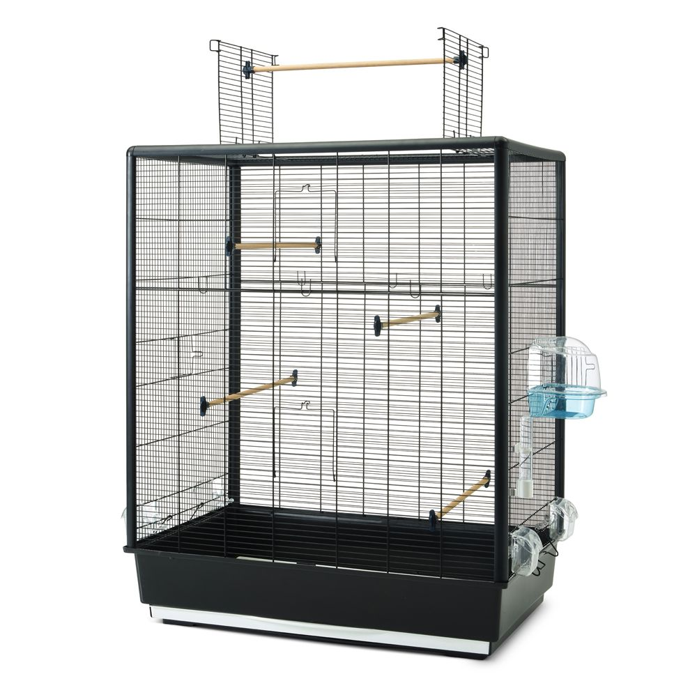 Your feathered friend's small empire, the Savic Primo 60 Extra bird cage, is a real highlight. The open roof allows your pet to leave its home to explore and view ...