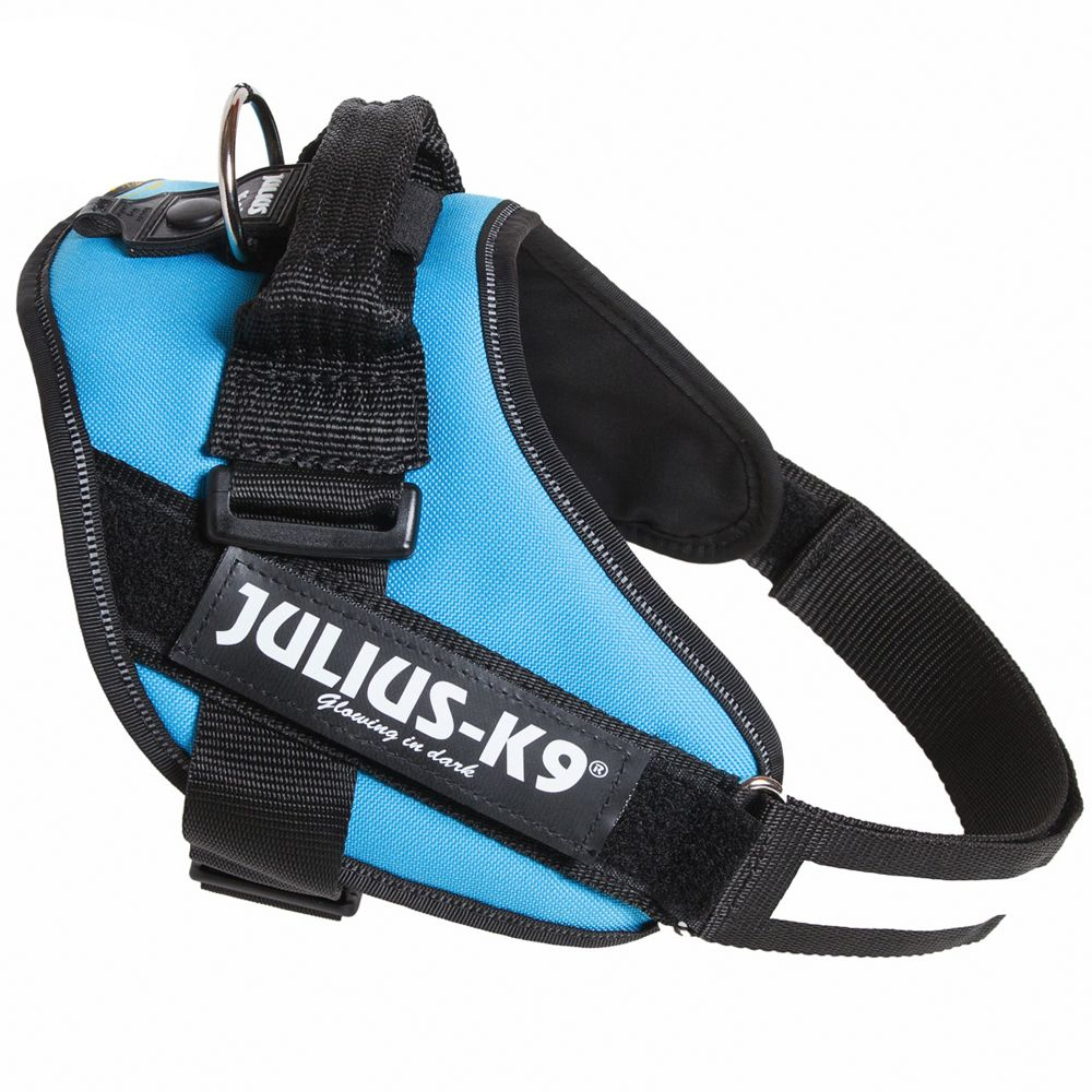 Julius-K9 IDC® Power Harness - Aqua - Baby 2