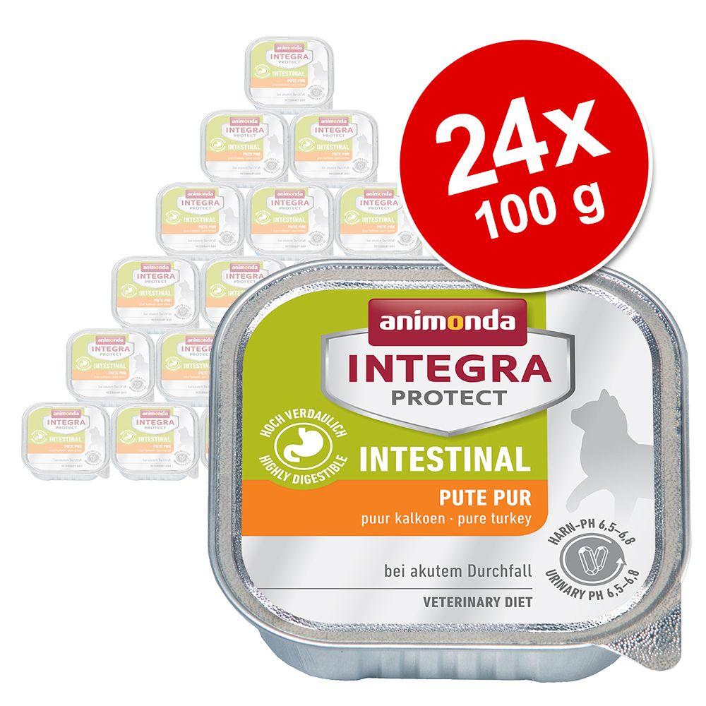 Ekonomipack: Animonda Integra Protect Adult Intestinal 24 x 100 g portionsform - Kalkon