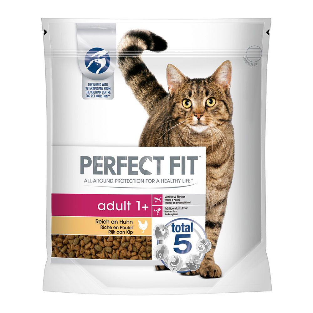 Perfect Fit Chicken Adult Dry Cat Food