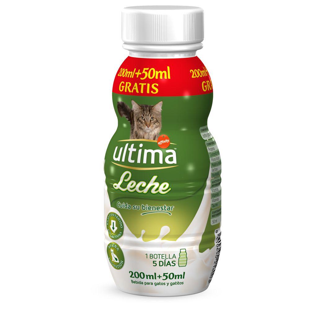 Special Diet Cat Food For Diarrhea