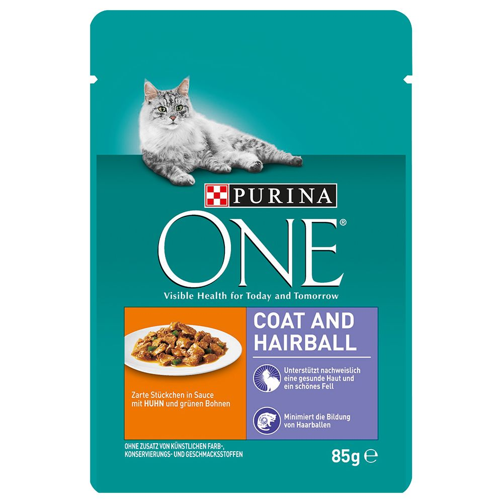 Chicken Coat & Hairball Purina ONE Wet Cat Food