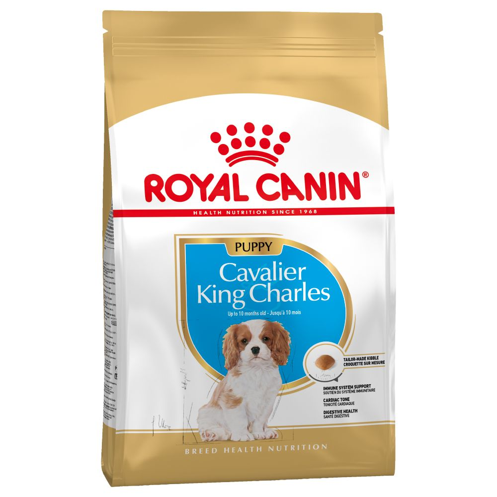 Puppy Cavalier King Charles Spaniel Royal Canin Dry Dog Food