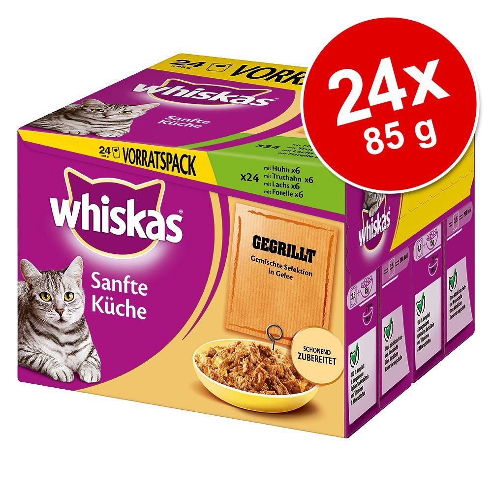 Whiskas Delicate Cuisine 24 x 85 g – Grillat blandpack