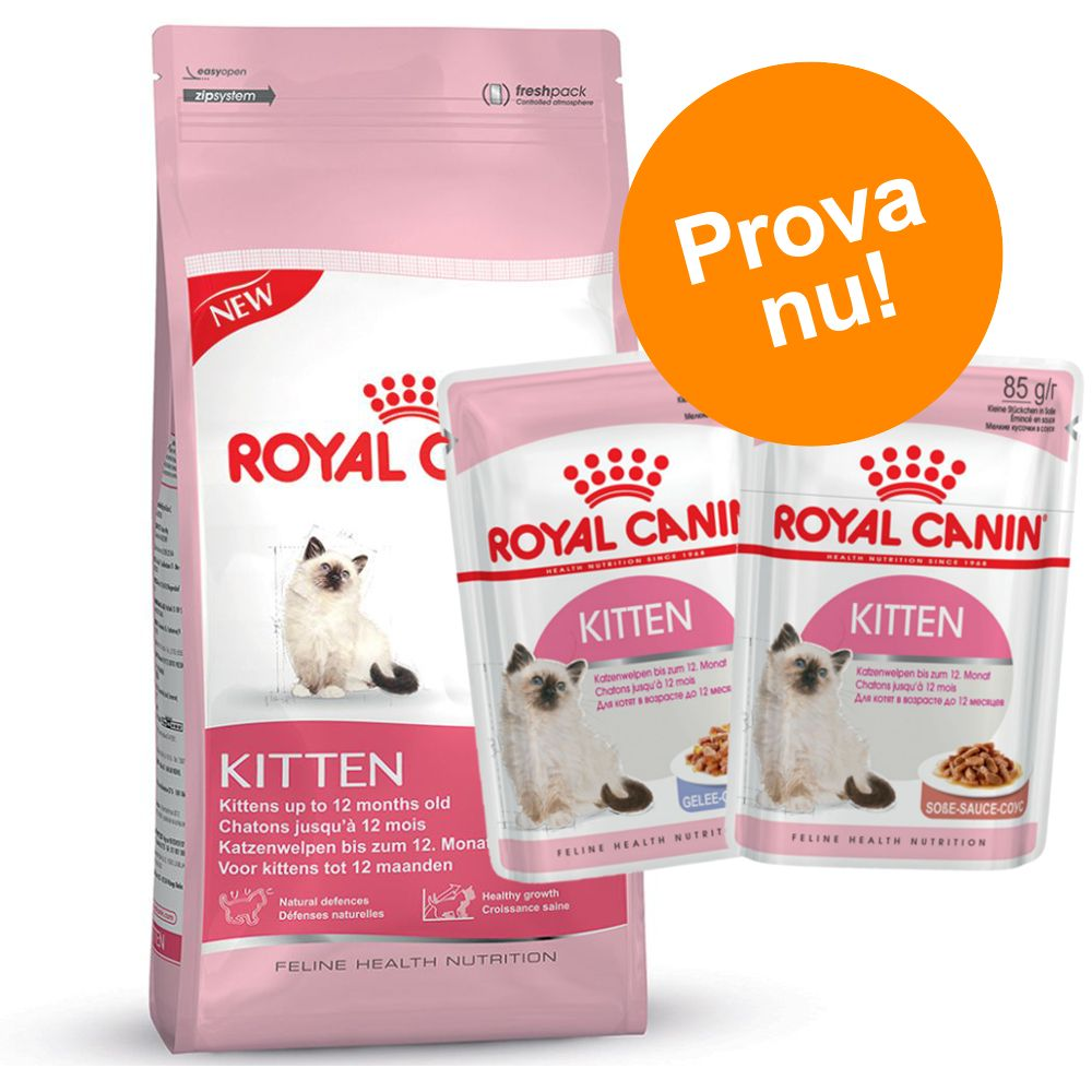 Blandat provpack: Royal Canin Kitten + 24 x 85 g våtfoder - Mother and Babycat (2 kg + 24 x 85 g våtfoder)