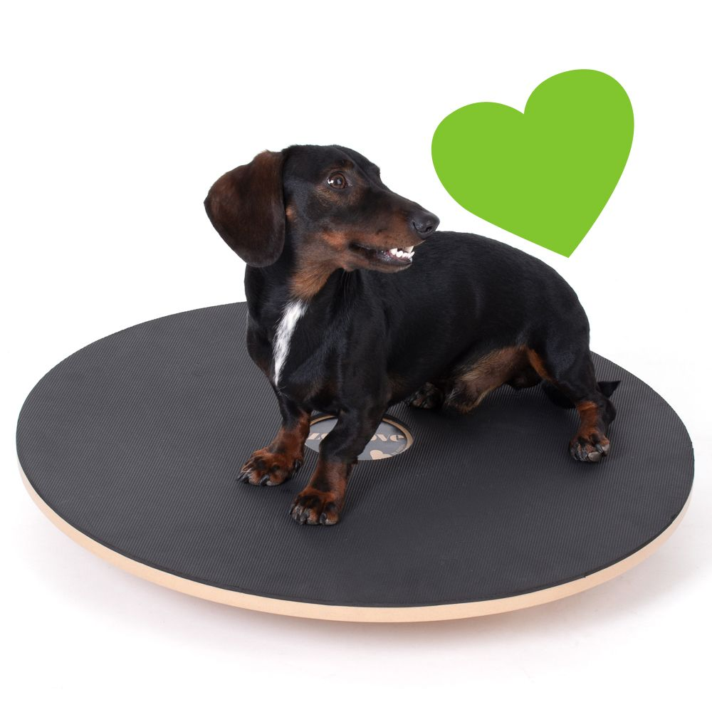 zoolove Activity Balance Board - Ø 65 cm