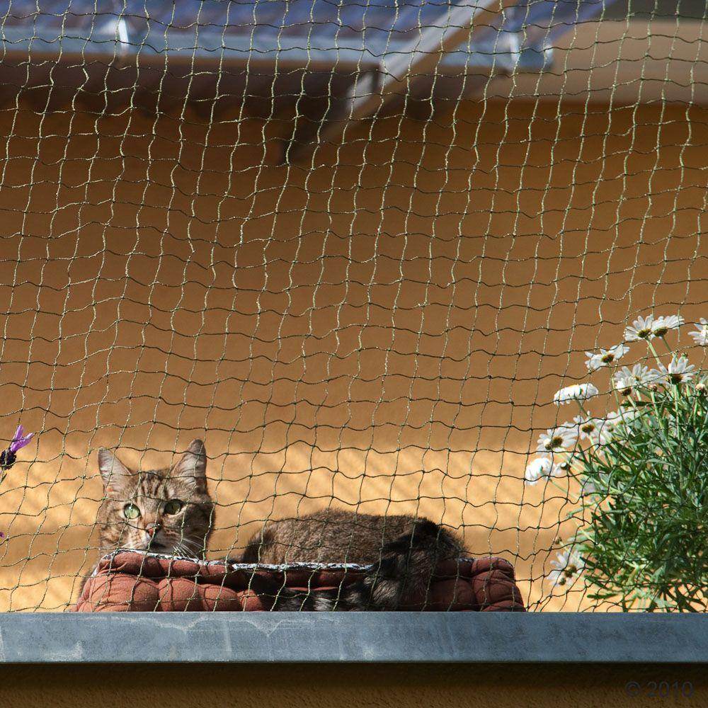 Wzmocniona siatka ochronna w rolce dla kota - 75 x 2 m, transparentna