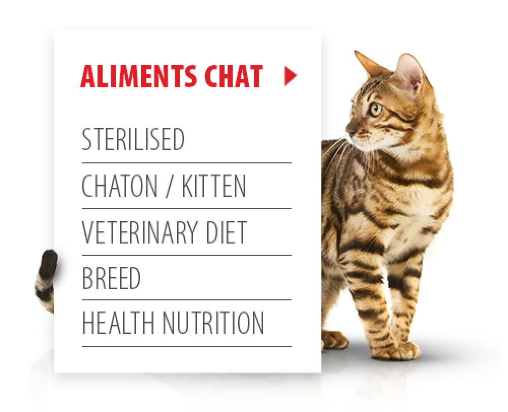 Aliments pour chat Royal Canin