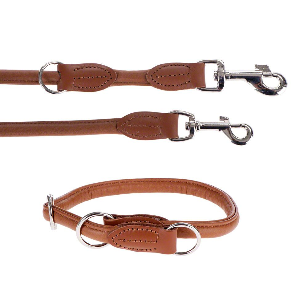 Hunter Round & Soft Lead & Collar Set
