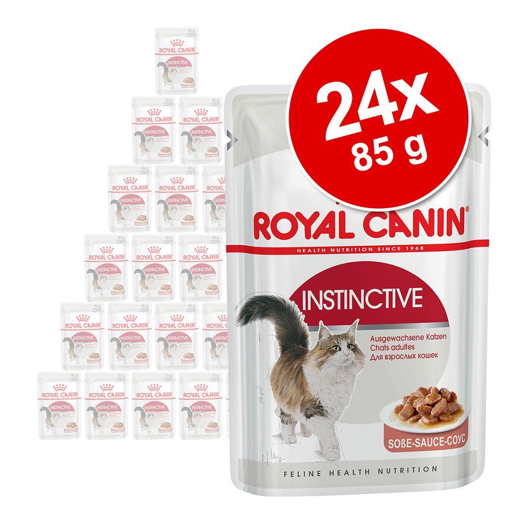 Pakiet mieszany Royal Canin, 24 x 85 g - Instinctive +7 w sosie i galarecie