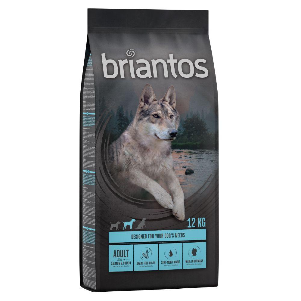 12kg Briantos Adult saumon, pommes de terre SANS CEREALES - Croquettes pour chien