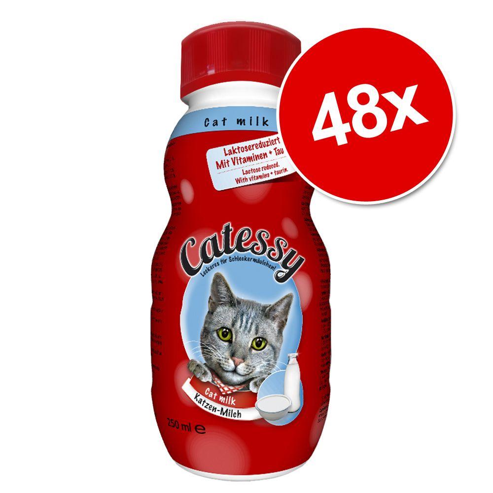 Jumbo Sparpaket: Catessy Katzenmilch 48 x 250 m...