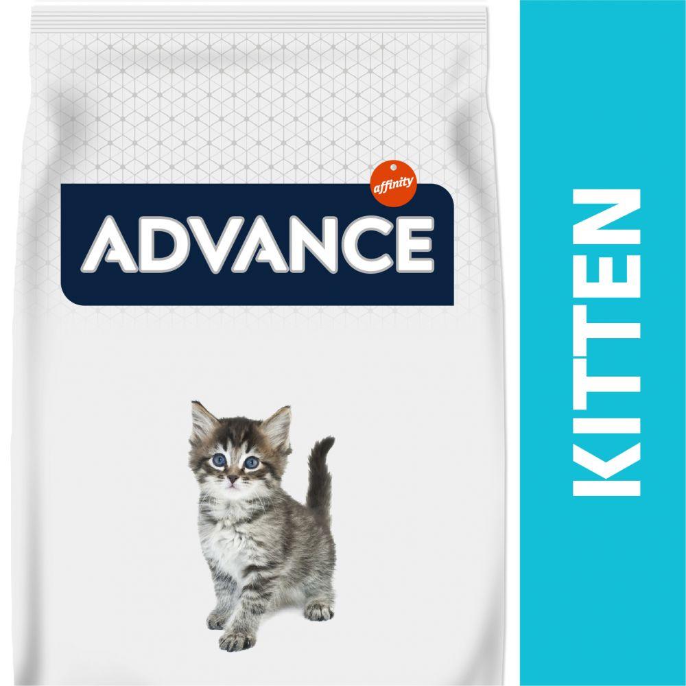 Advance Kitten pour chaton - 10 kg