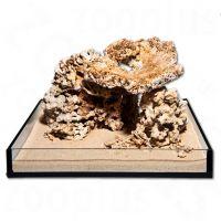 Set di coralli per acquario - - set 300 litri, 13 pz.