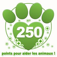 Don de 250 points bonus à une association !