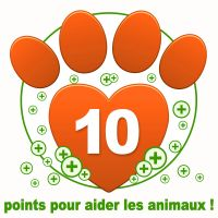 Don de 10 points bonus à une association !