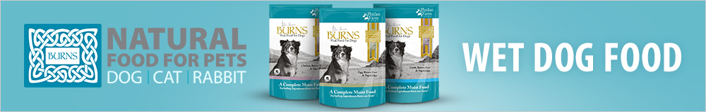 Burns Wet Dog Food