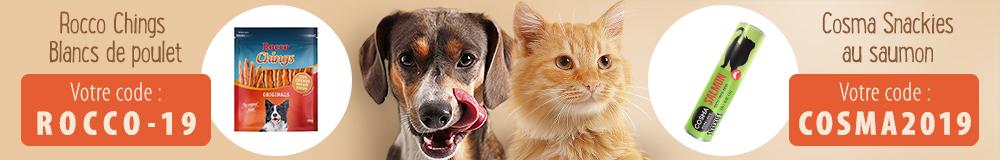 Friandises offertes pour chien et chat