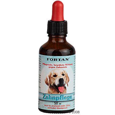 Chien Toilettage et hygiène Dents et gencives Dentifrice et brosse à dent pour chien