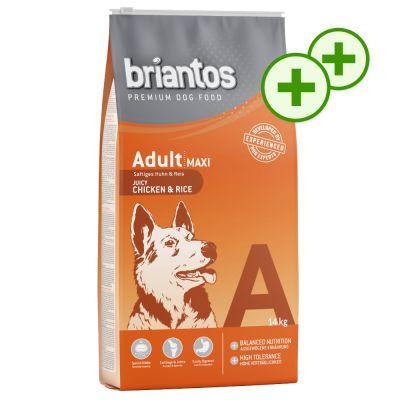 2x zooPlusPisteitä: Briantos-kuivaruoka 14 kg - Adult Sensitive Lamb & Rice