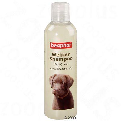 Beaphar Glossy Coat -shampoo koiranpennuille - säästöpakkaus: 2 x 250 ml