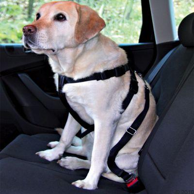 trixie-hondenautogordel-maat-s-borstomvang-30-60-cm