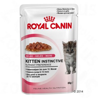 Royal Canin Kitten Instinctive in Jelly – 24 x 85 g