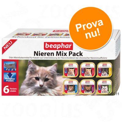 Provpaket: beaphar Renal Diet – 6 x 100 g