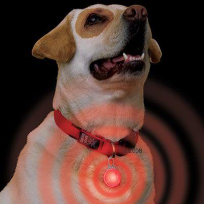 veiligheidshanger-karabiner-led-rood-licht